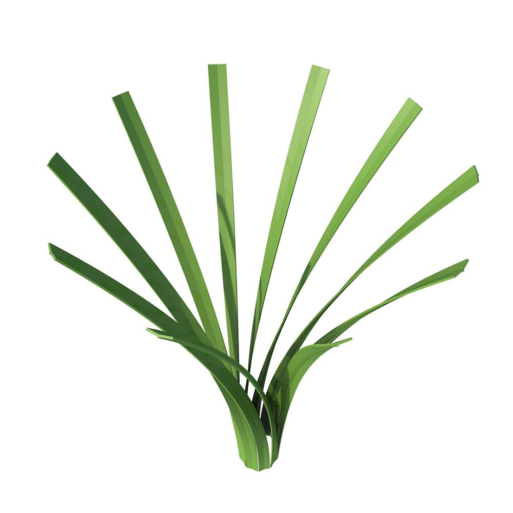 Goal Grass® Daimond Grass